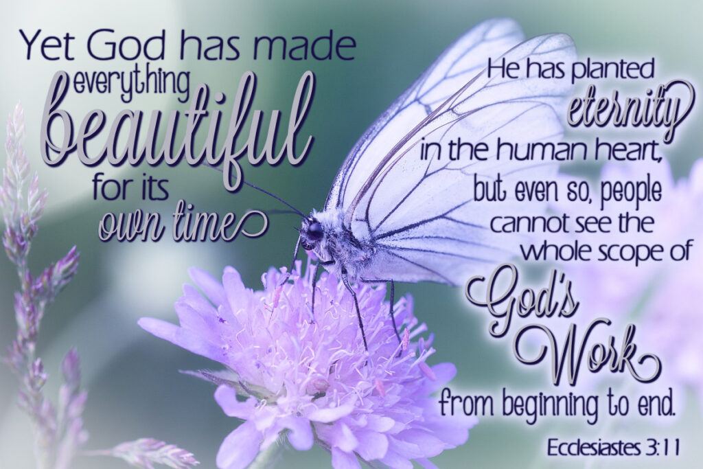 Yet God has made everything beautiful for its own time. He has planted eternity in the human heart, but even so, people cannot see the whole scope of God's work from beginning to end. Ecclesiastes 3:11